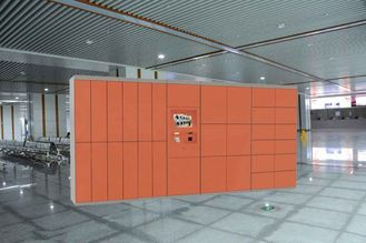 China Safe Electronic Laundry Locker / Smart Software Control Rental Dry Cleaning Lockers factory