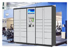 Self Service Custom Web Online Delivered Parcel Locker With Advertising LCD supplier
