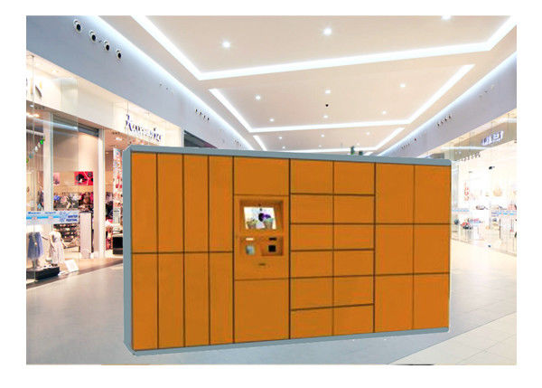 Clothes Drying Laundry Service Equipment Storage Closet Cabinet Steel Locker With Network supplier