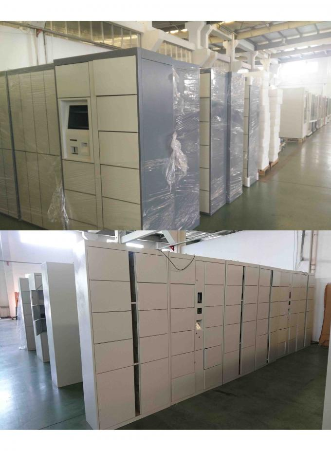 Safe Electronic Laundry Locker / Smart Software Control Rental Dry Cleaning Lockers